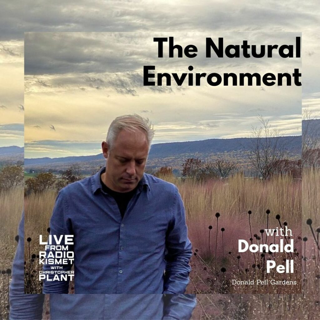 The Natural Environment Cover Art
