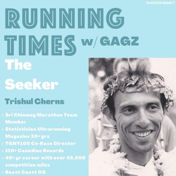 The Seeker Cover Art